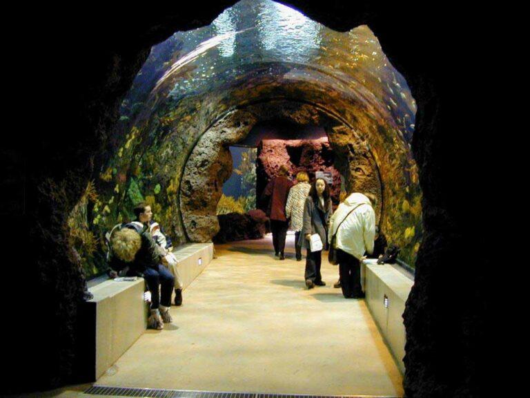 Rotterdam Zoo Aquarium
